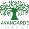 Logo AVANGARDE GREEN CONSTRUCT SRL