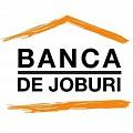 Logo BANCA DE JOBURI SRL