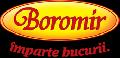 Logo BOROMIR IND SRL