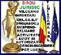 Logo BIROU CONSULTANTA VALCEANU SRL-D
