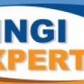 Logo CHINGI EXPERT SRL
