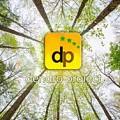 Logo DENDRO PROIECT SRL