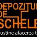 Logo DEPOZITUL DE SCHELE SRL
