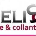 Logo MELISSA STAR EXPO SRL