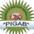 Logo SC. PIGAB SERV SRL
