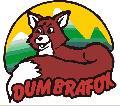 Logo SC DUMBRAFOX SRL