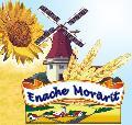 Logo SC ENACHE MORARIT SRL