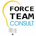 Logo SC FORCE TEAM CONSULT SRL