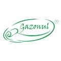Logo SC GAZONUL SRL