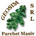 Logo SC GEOSIM SRL