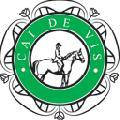 Logo SC MARTINAS SRL