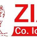 Logo SC ZIACO IO-TE SRL