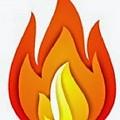 Logo STINGO PRODSERV IMPEX SRL