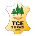 Logo TCE 3 BRAZI SRL