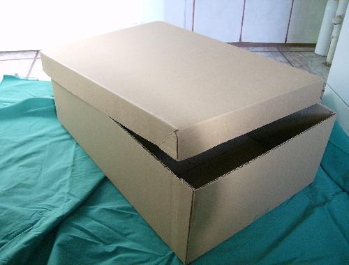 cutii cu capac detaşabil