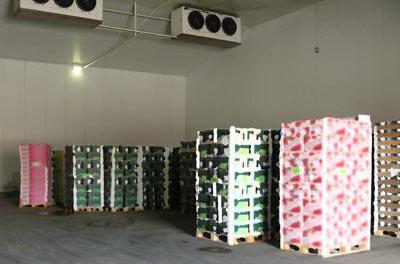 Camere frigorifice depozite pentru medicamente farmacii