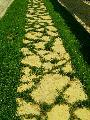 Piatra naturala rustica