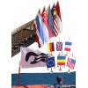 Fanioane steaguri