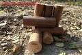 Brichete lemn 100% fara aditivi