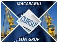 Cursuri/Stagii ISCIR 2017