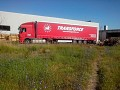 Transport intern marfuri cu camioane