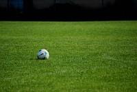 Amenajare si reconditionare terenuri de sport