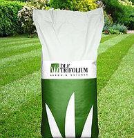 Gazon Luxgrass Sport DLF Trifolium