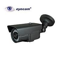 Camera supraveghere IP 1.3MegaPixeli Eyecam EC-1003