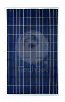 Panou solar fotovoltaic policristalin Trina Solar Honey 255W