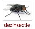 Servicii deratizare, dezinsectie, dezinfectie