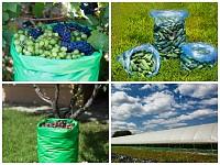 Saci si huse pentru ambalarea si transportul fructelor