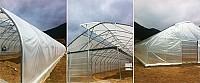 Solarii profesionale de legume cu ventilatie la coama