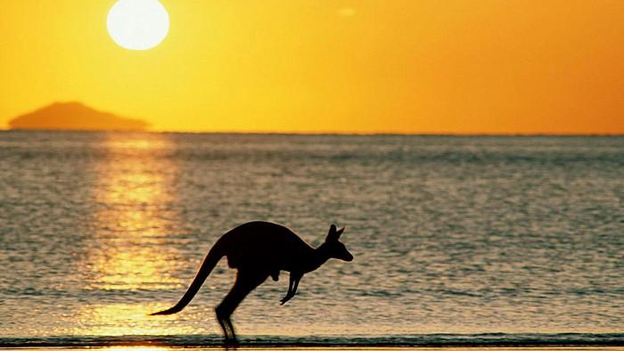 Circuit turistic AUSTRALIA – NOUA ZEELANDA – TASMANIA -