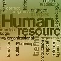 consultanta in resurse umane