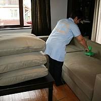 curatat canapele