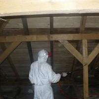 ignifugare case lemn