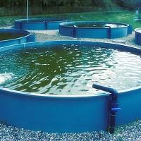 rezervoare piscicole